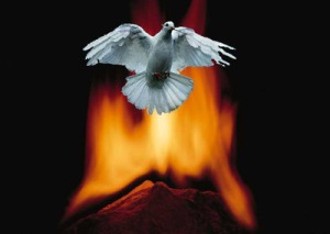 Dove and Fire