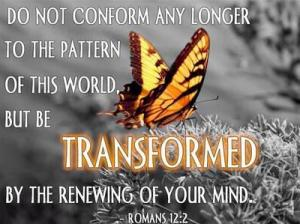 Conform Transformed Butterfly